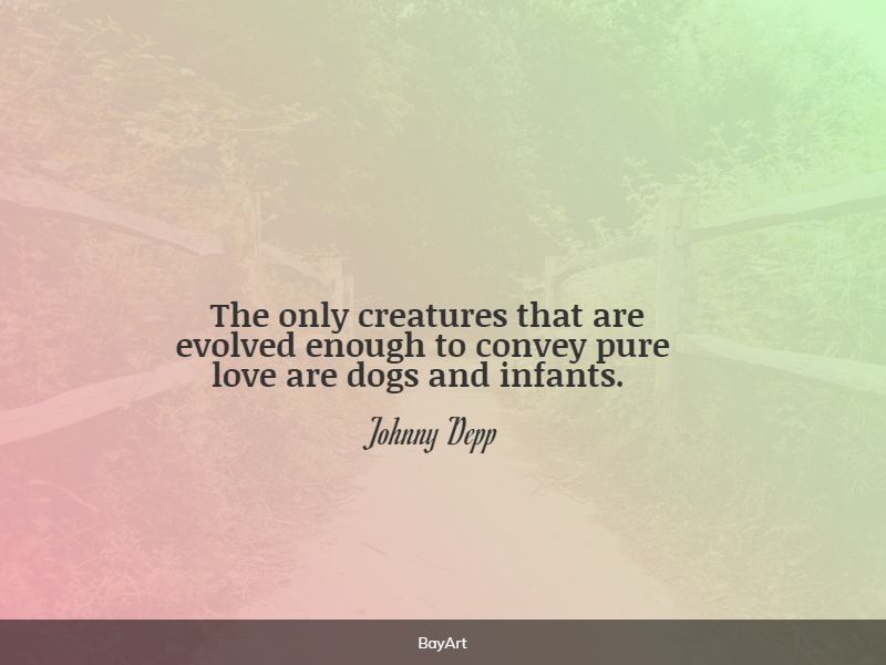sweet baby love quotes