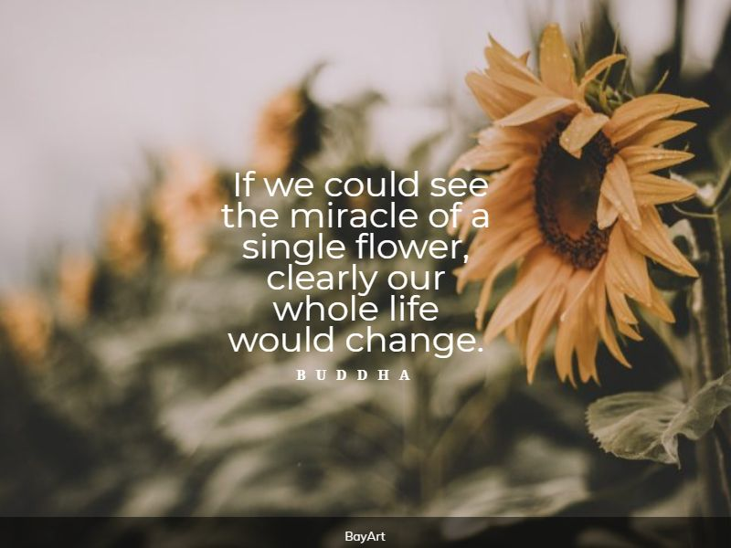 best flower quotes